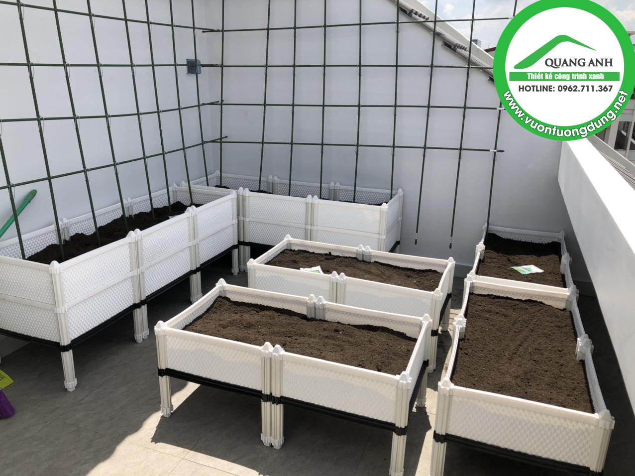 Thi công vườn rau sạch tại nhà cho khách ở quận Tân Bình, TPHCM - Quang Anh HCM chuyên thi công vườn rau sạch giá rẻ tại nhà!