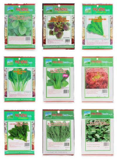 Cách trồng rau ăn lá tại nhà