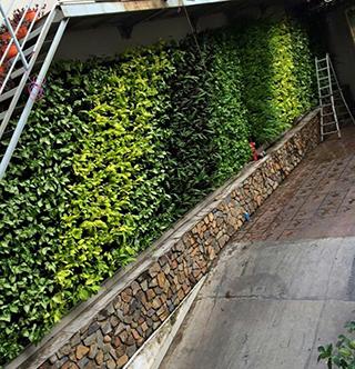 Địa chỉ thiết kế tường đứng đẹp và sang trọng-Công ty Quang Anh