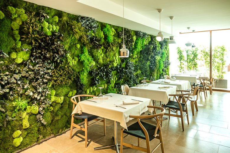 Tổng hợp các mô hình vườn tường đứng đẹp nhất 2020