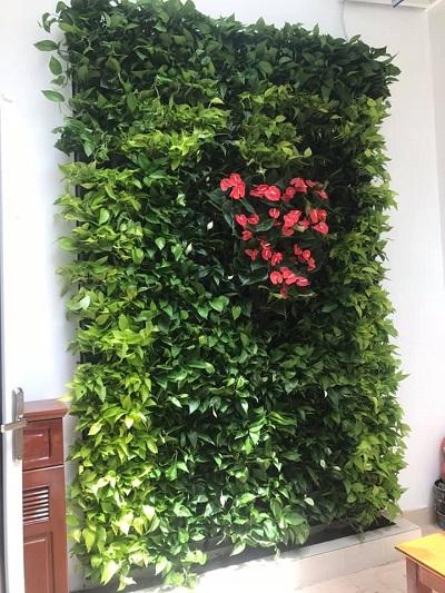Thi công vườn tường đứng trong nhà – Quận 1