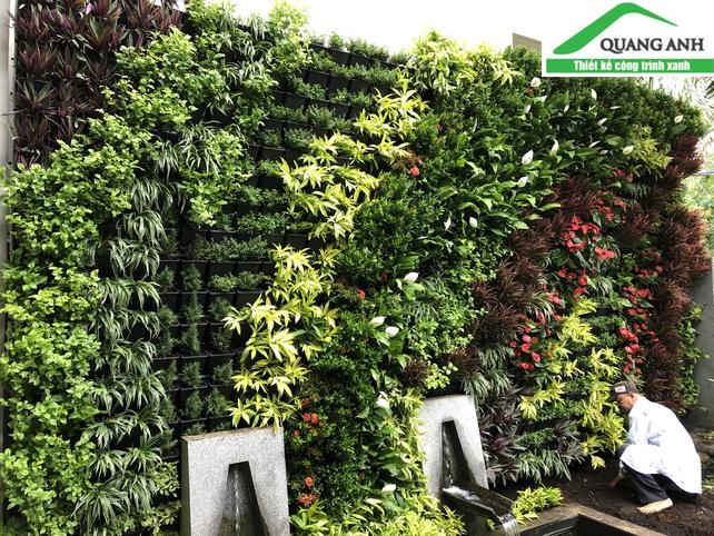 Quang Anh HCM - Thi công vườn tường đứng đẹp, giá rẻ tại Nguyễn Trọng Tuyển, Quận Phú Nhuận
