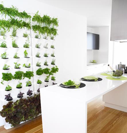 Giàn trồng rau thông minh chuyên dùng cho ban công và sân thượng tại TP HCM