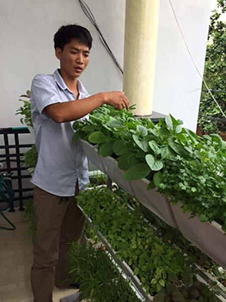 Những lợi ích đến từ việc trồng rau sạch tại nhà