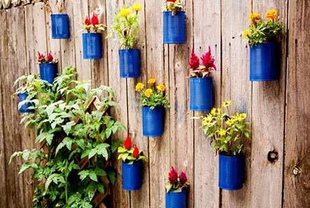 Những mô hình trồng rau sạch tại nhà hiệu quả nhất hiện nay