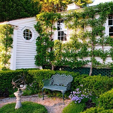 Thiết kế vườn đứng tại TP Hồ Chí Minh-Địa chỉ thiết kế vườn trong nhà đẹp nhất hiện nay