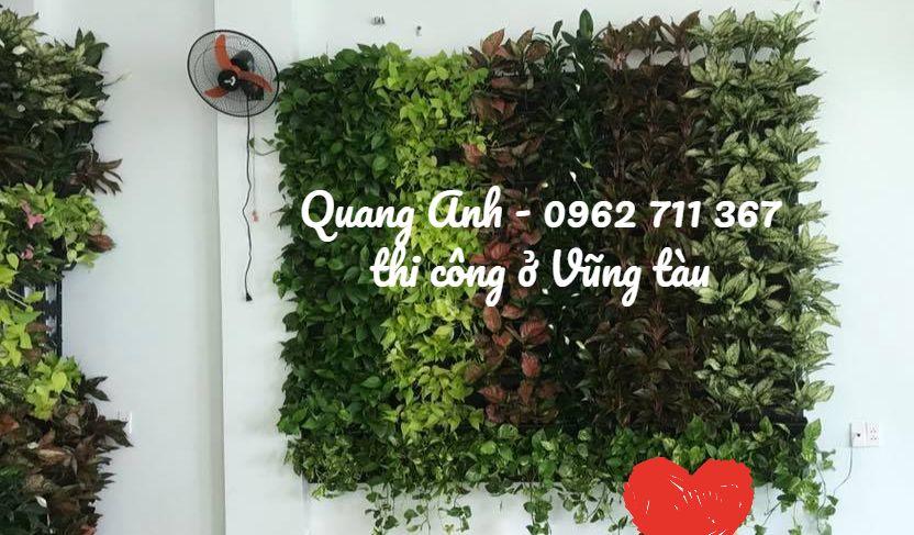 Vườn sân tường mang đến sự tinh tế– Mẫu vườn tường thi công ở Vũng Tàu