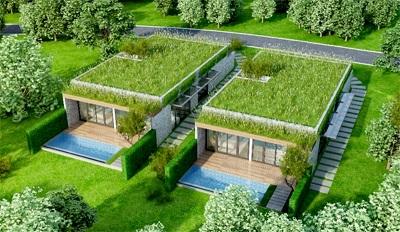 Bí quyết chọn vườn trên mái giúp ngôi nhà thêm tươi mới