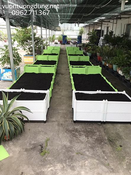 Vườn rau sử dụng chậu ghép nhựa thông minh