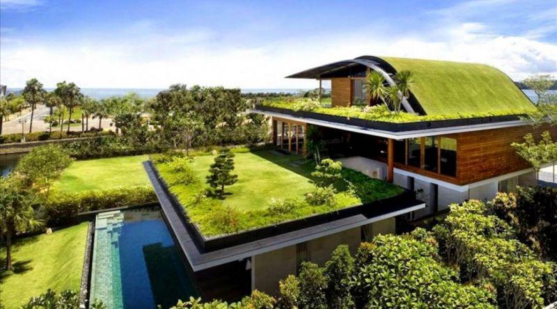 7 Cách làm đẹp ngôi nhà của bạn với vườn tường đứng Quang Anh HCM
