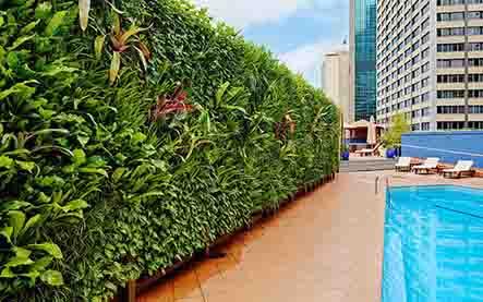 Địa chỉ thiết kế vườn trên tường tại tphcm uy tín và chất lượng nhất