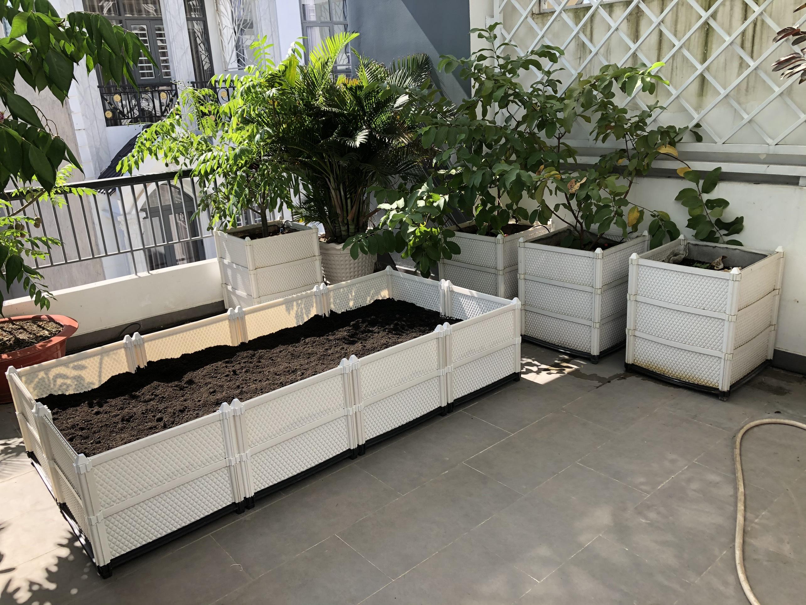 Quang Anh HCM thi công vườn rau sạch tại gia tránh xa Covid!
